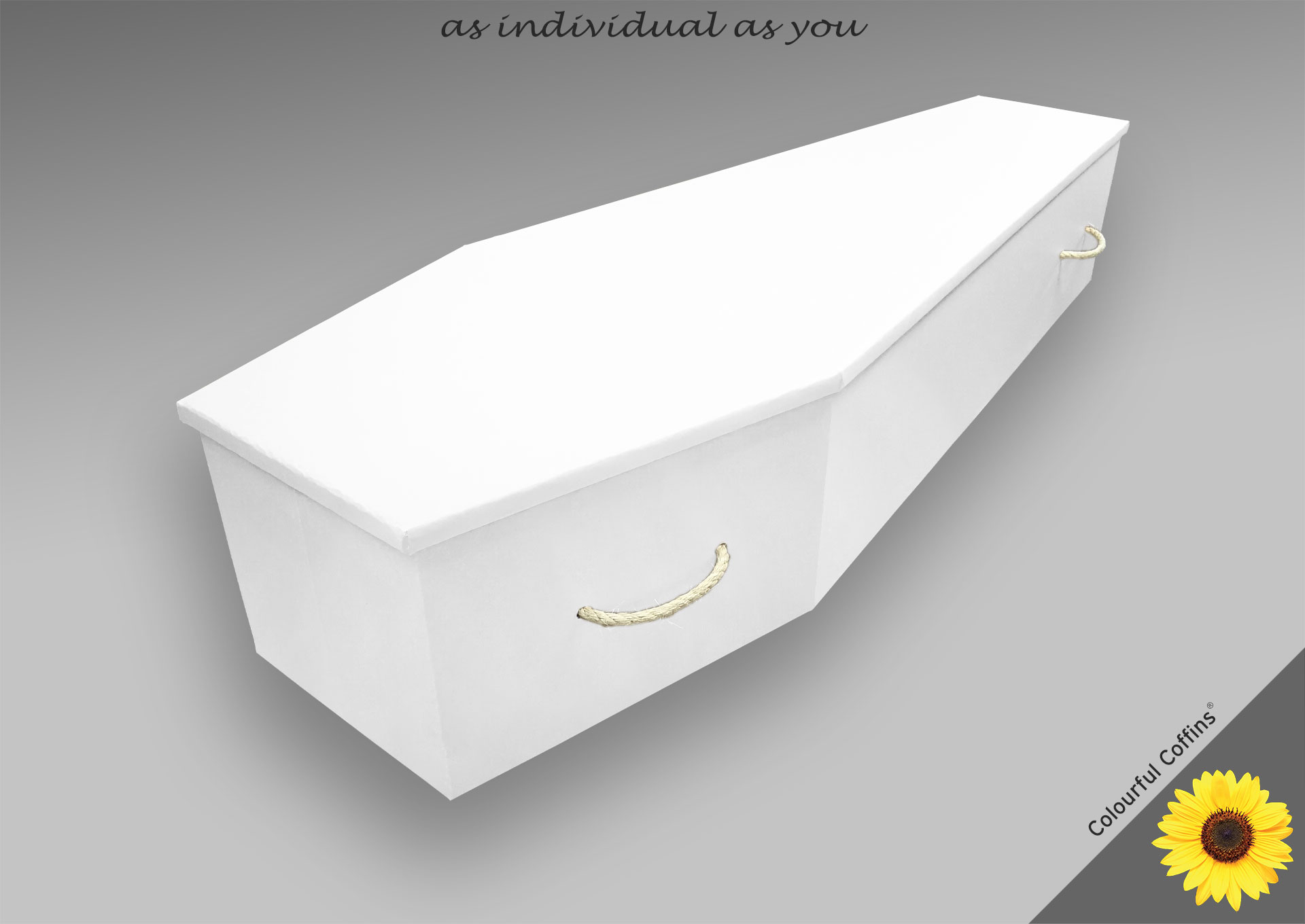 Cardboard_white £550