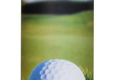 Golf copy